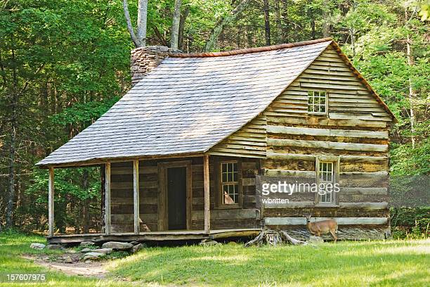 settlers cabin with deer - cades cove stock pictures, royalty-free photos & images
