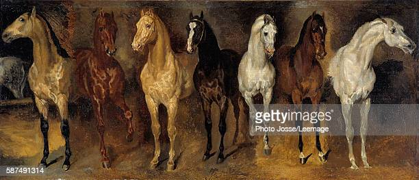 Seven horses' chests Painting by Theodore Gericault 19th century 039 x 094 m Private Collection
