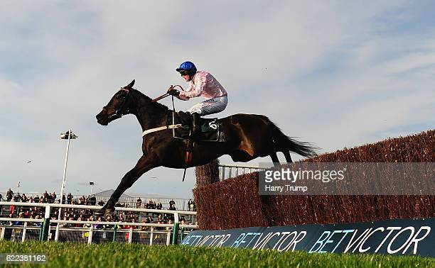 Seven ridden by Nico De Boinville jumps the last to win the Steel Plate and Sections Novices Steeple Chase at Cheltenham Racecourse on November 11...