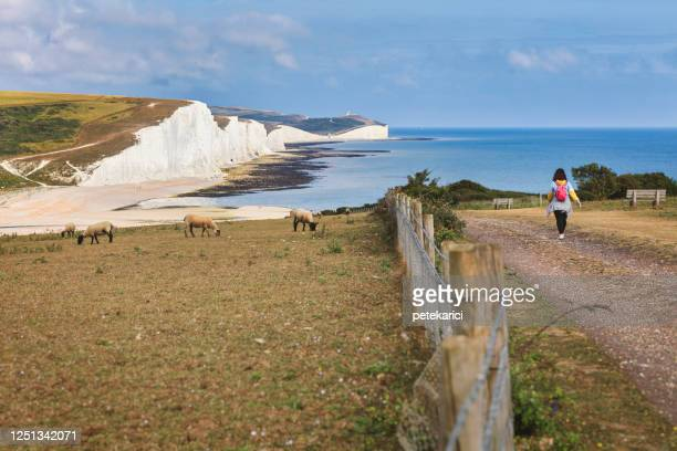 seven sisters country park tall white chalk cliffs, east sussex, uk - coastline stock pictures, royalty-free photos & images