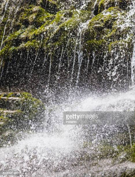 seventeen meter (55.77 feet) waterfall, called la chute, in forillon one of canada's famous national parks, situated near gaspé quebec. - cap des rosiers stock pictures, royalty-free photos & images