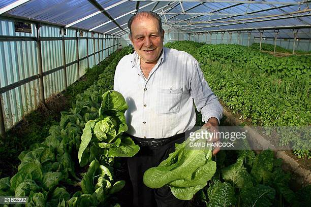 Seventyeightyearold organic farmer Paul Agostino who migrated from Calabria in southern Italy in 1951 after his father was murdered by the Mafia...