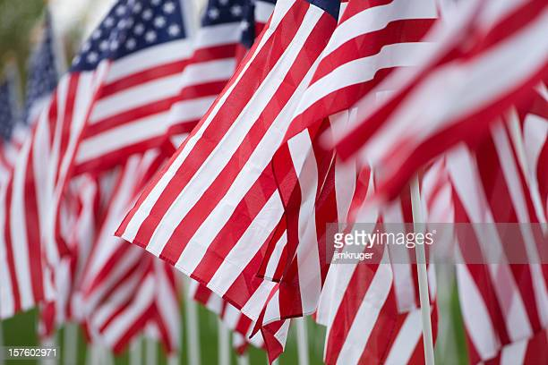 several american flags blowing in the wind - memorial day remembrance stock pictures, royalty-free photos & images