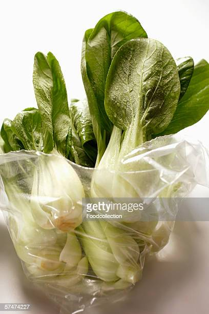 several baby pak choi in plastic bag - baby bok choy stock photos and pictures