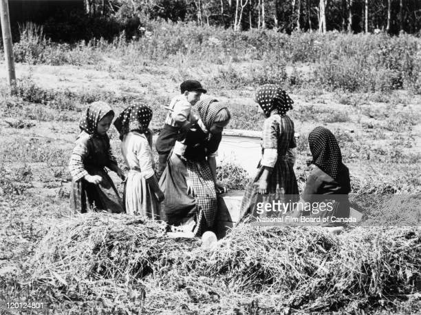 Several Hutterite children are playing in a field on the colony in Northeast Alberta Canada 1963 Photo taken during the National Film Board of...