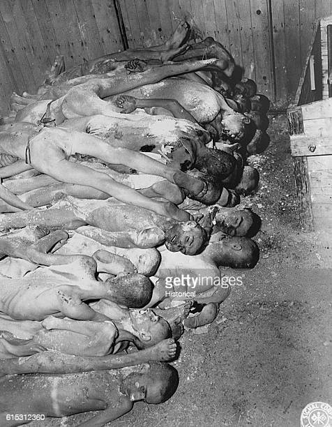 Several naked emaciated male corpses in a pile with white powder lime thrown over them Ohrdruf Concentration Camp | Location Ohrdruf Europe