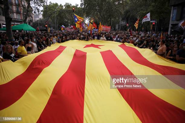 Several people hold a Estelada flag during the demonstration organized by the Independence Left, on the occasion of the Diada, Catalonia Day, on 11...