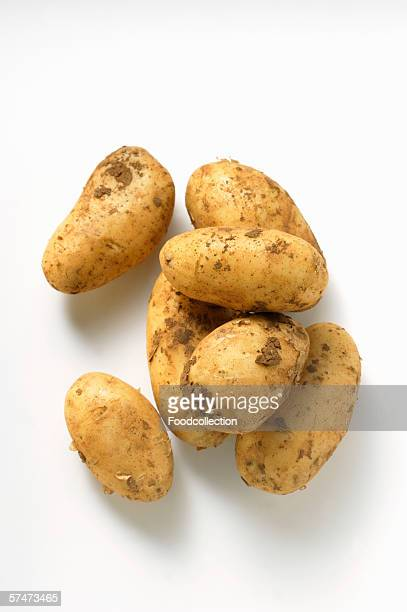 Several potatoes with soil