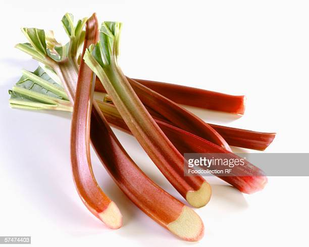Several sticks of rhubarb