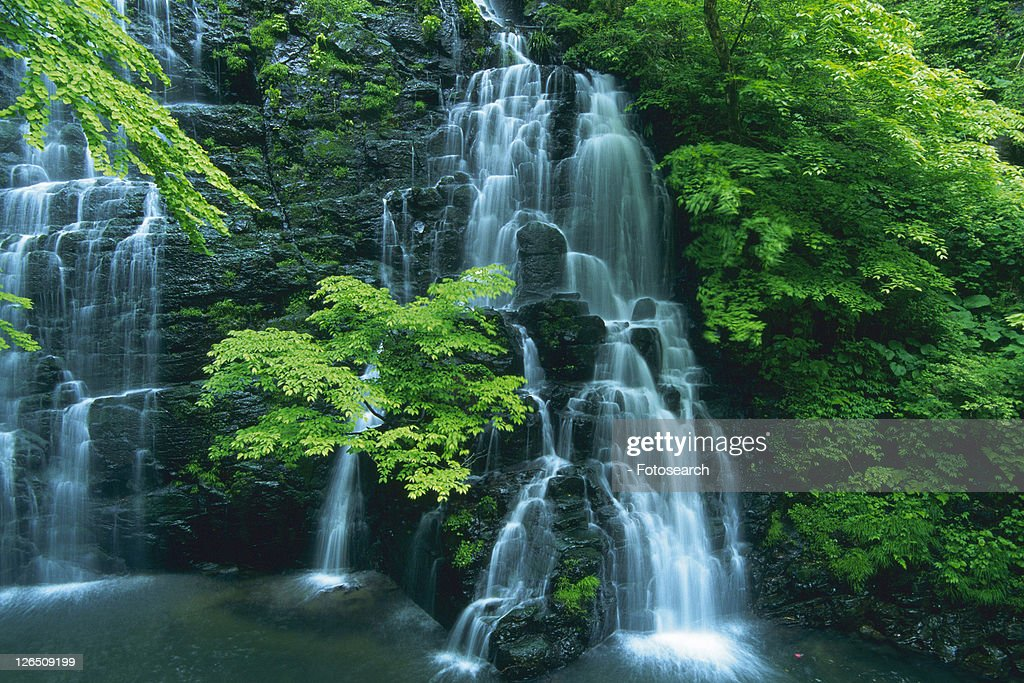 Several Waterfalls Surrounded By Trees and Green Bushes, Long Exposure, Fukui Prefecture, Japan : Foto de stock