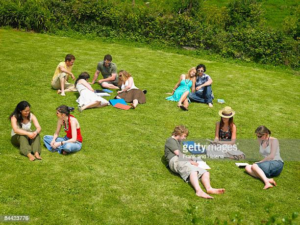 several young people studying on lawn - 斜めから見た図 ストックフォトと画像