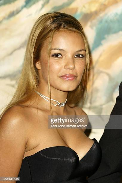 Severine Ferrer during Charlie's Angels Full Throttle Premiere Paris at UGC Normandy Champs Elysees in Paris France