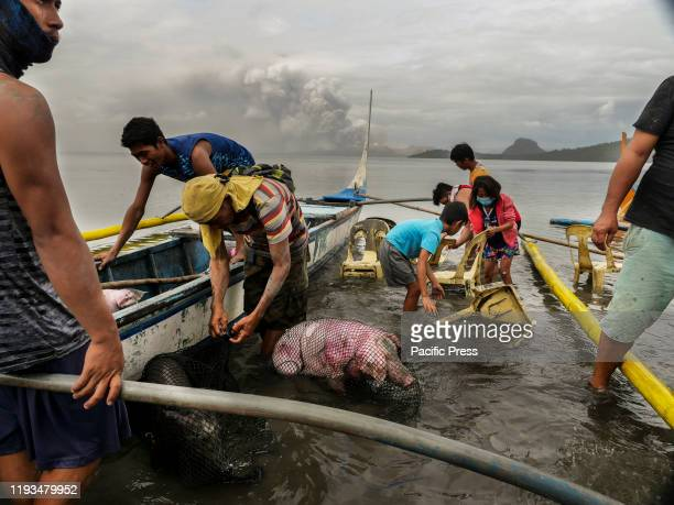 Severino Magpantay and two of his relatives who bravely went back to their houses at the volcano island to rescue their livestock and recover other...