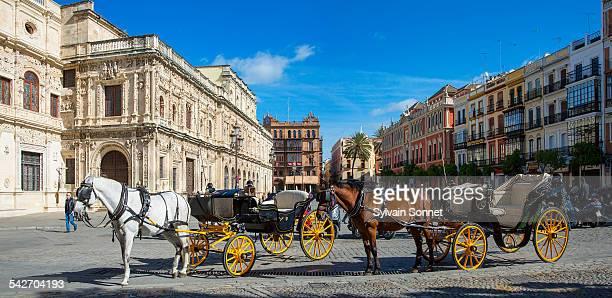 seville, carriage on plaza de san francisco - 四輪馬車 ストックフォトと画像