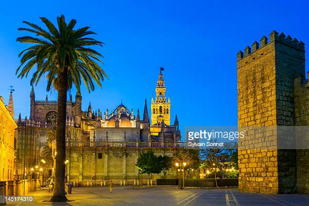 seville, cathedral at dusk from plaza del triunfo - cathedral stock pictures, royalty-free photos & images