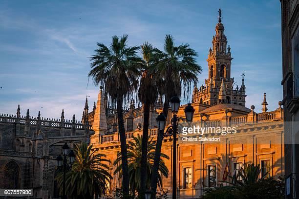 seville cathedral - la giralda fotografías e imágenes de stock