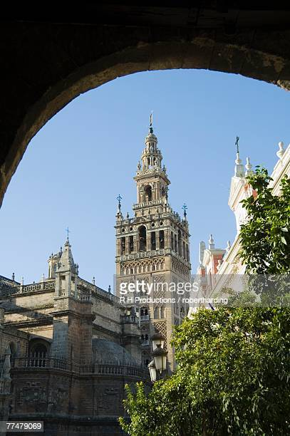 Seville Cathedral, Santa Cruz district, Seville, Andalusia (Andalucia), Spain, Europe