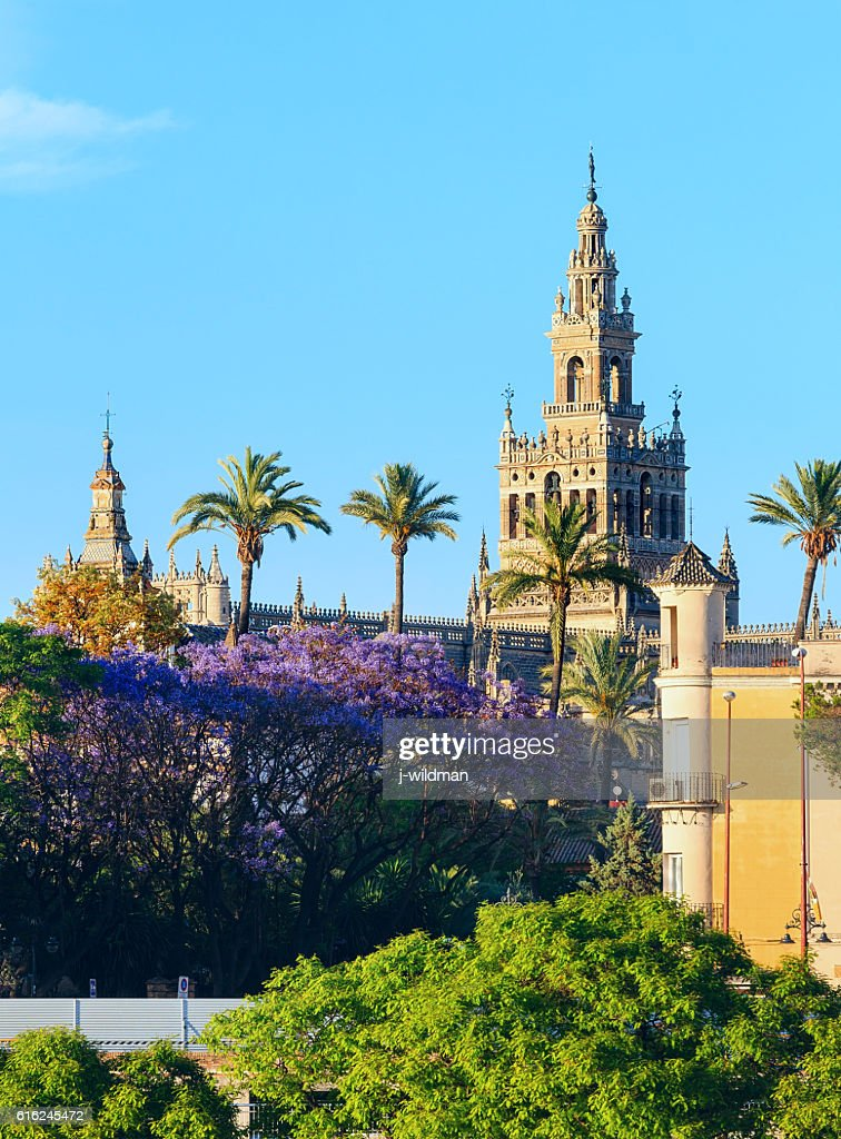 Seville city, Spain. : Stock Photo
