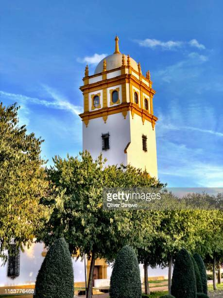 seville exposition tower built in 1929 - 1920 1929 stock pictures, royalty-free photos & images