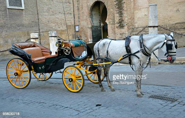 Seville. Horse carriage