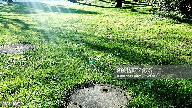 Sewer Drains In Grassy Field