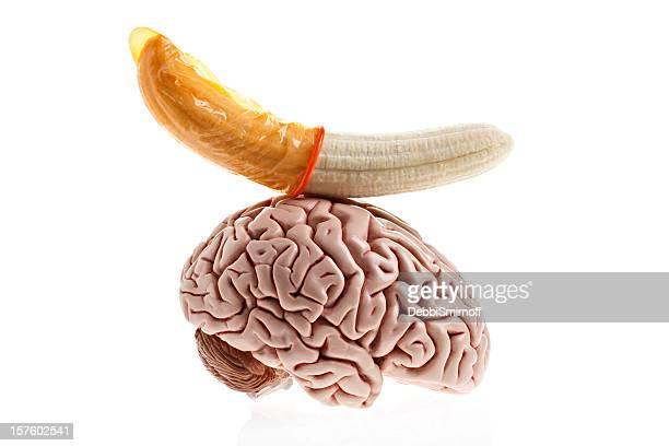 Sex auf das Gehirn
