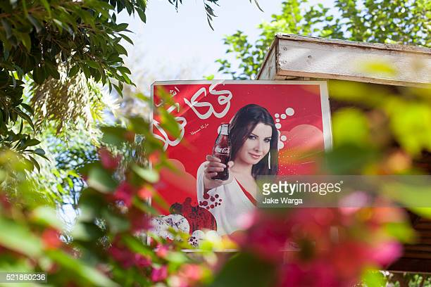 sexy coca-cola advertisement in arabic, morocco - jake warga stock pictures, royalty-free photos & images