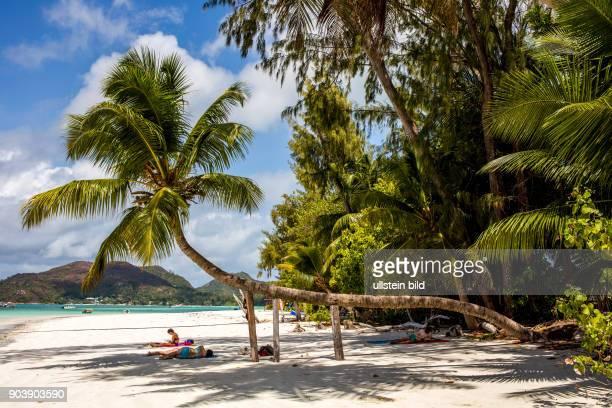 Seychellen Seychelles SYC Praslin Inselstaat Africa Afrika Suedliches Afrika Westkueste Afrasia Indischer Ozean Maskarenruecken Tropen Archipel...