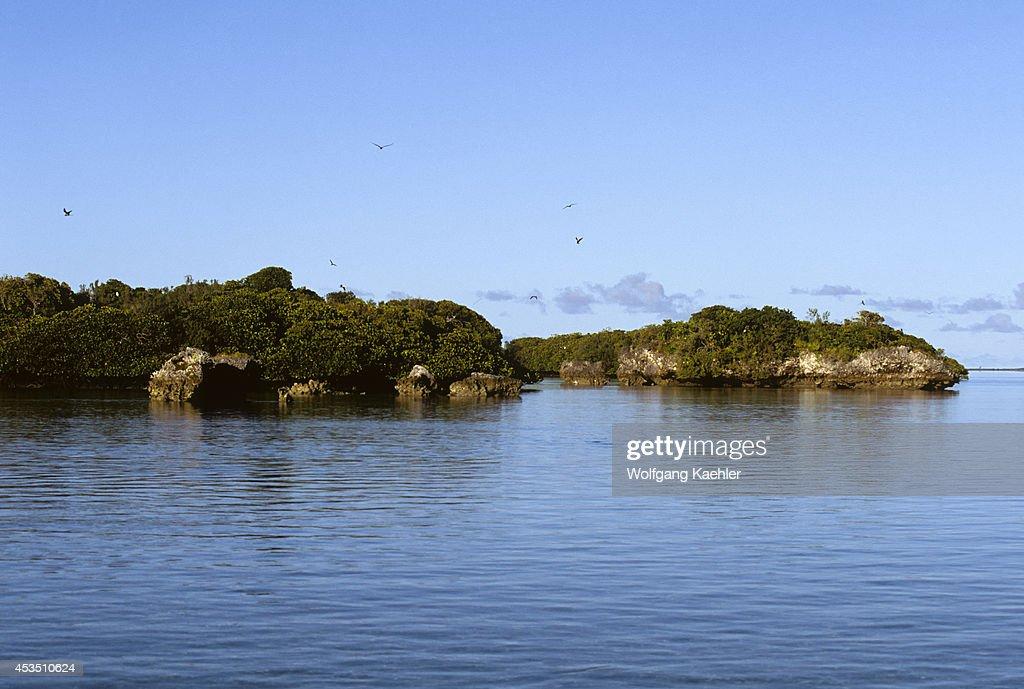 Seychelles, Aldabra Island, World's Largest Atoll, Inside... : News Photo