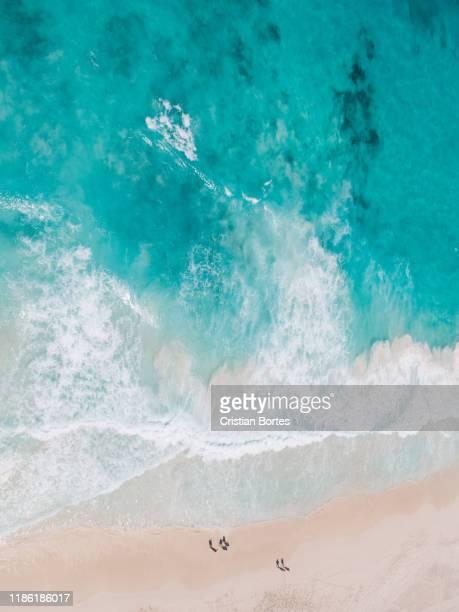 seychelles - bortes fotografías e imágenes de stock