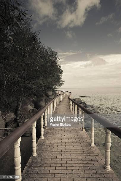 seychelles, praslin island, anse bois de rose, seaside promenade at the coco de mer hotel - coco de mer stock pictures, royalty-free photos & images