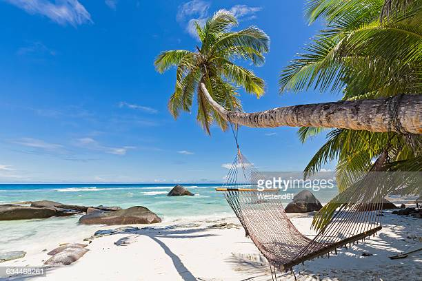 seychelles, silhouette island, beach la passe, presidentel beach, palm with hammock - seychelles stock pictures, royalty-free photos & images
