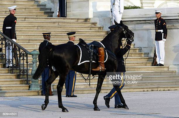 Sgt York the riderless horse follows the casket of former US President Ronald Reagan as it is carried up the west steps of the US Capitol Building 9...