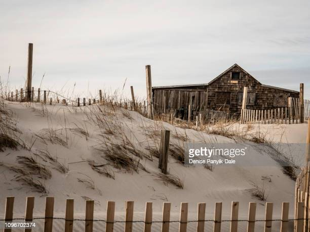 shack on beach at sunset - panyik-dale stock photos and pictures
