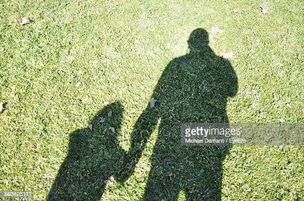 shadow casted by man holding hands with child - michael damanti fotografías e imágenes de stock