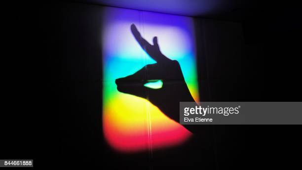 Shadow hand puppet in rainbow light