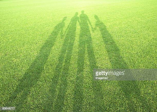 shadow in the field of grass - 影のみ ストックフォトと画像