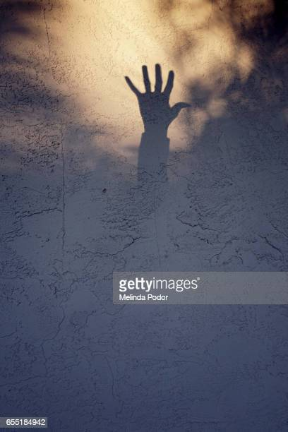 shadow of a hand reaching up - shadow puppet stock photos and pictures