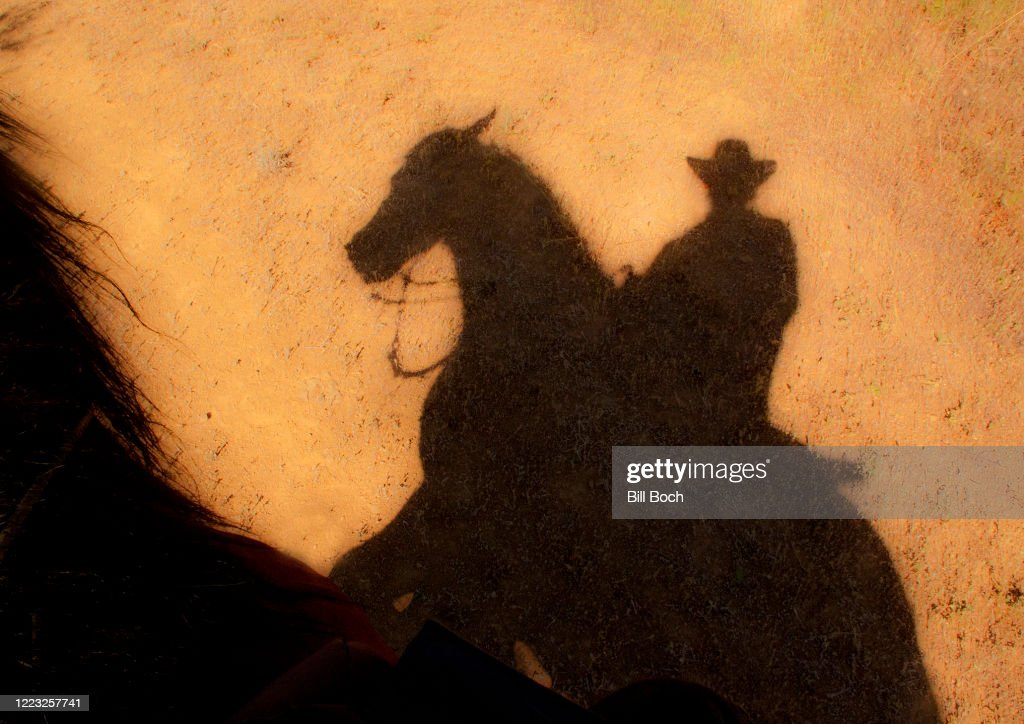 Shadow of a horse and cowboy rider in the desert under a hot afternoon sun - horses mane showing : Stock Photo