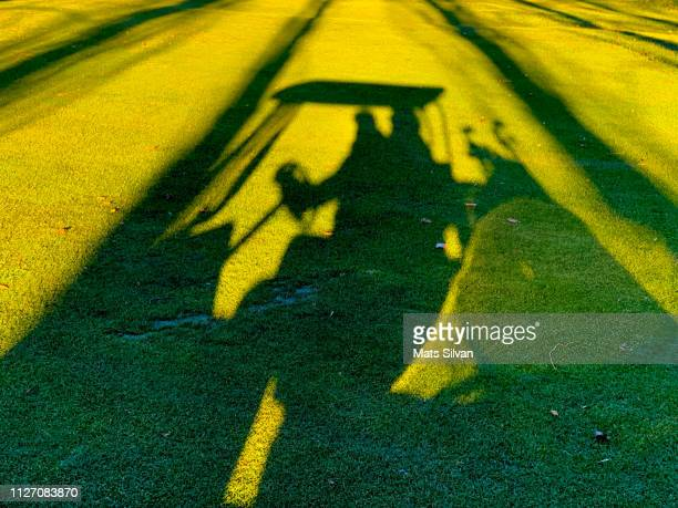 Shadow of a Man Travel with a Golf Cart on Golf Course