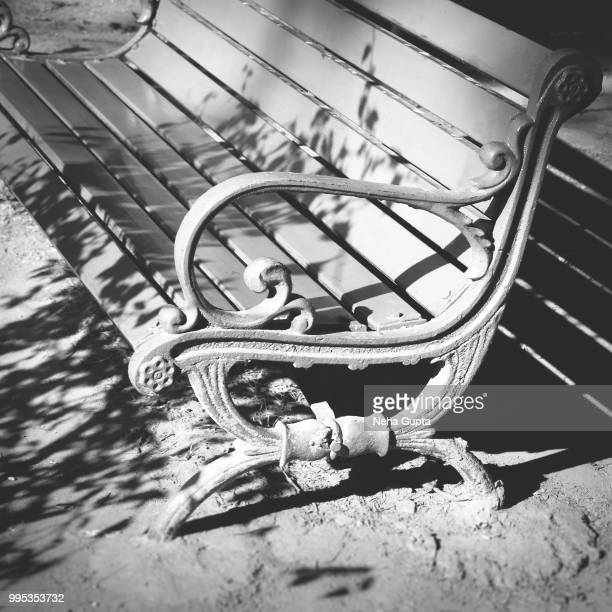 shadow of a tree on a park bench - neha gupta stock pictures, royalty-free photos & images