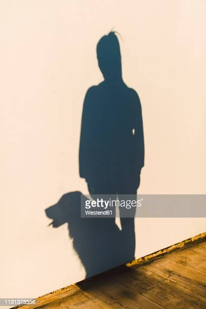 Shadow of a woman and her dog on a white wall