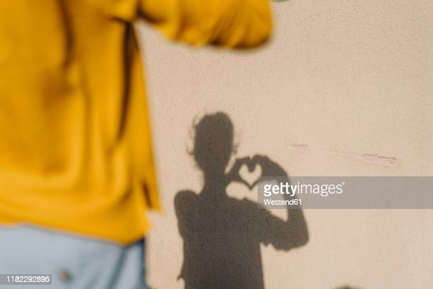 shadow of a woman shaping a heart with her hands - liefde stockfoto's en -beelden