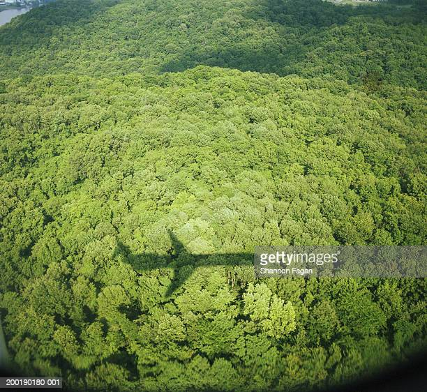Shadow of airplane on treetops, aerial view