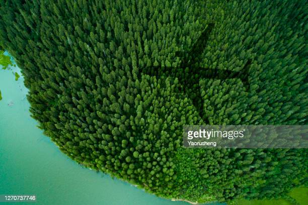 shadow of airplane over forest  and a lake - aeroplane stock pictures, royalty-free photos & images