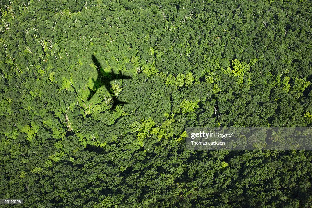 Shadow of airplane over forest : Foto stock