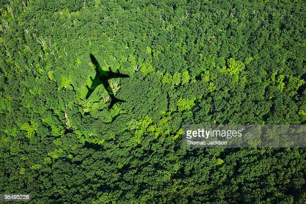 shadow of airplane over forest - flugzeug stock-fotos und bilder