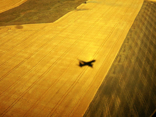 Shadow of airplane
