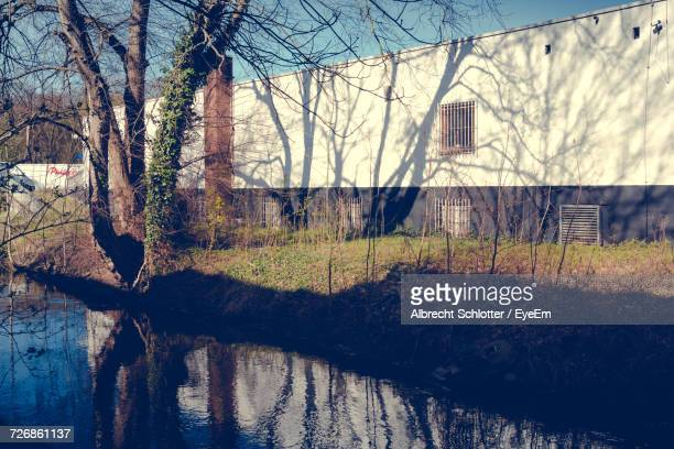 shadow of bare tree falling on building by canal - albrecht schlotter foto e immagini stock