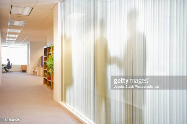Shadow of business people in conference room